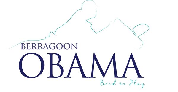 Obama---Logo-